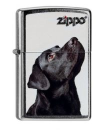 Zippo Black Lab -